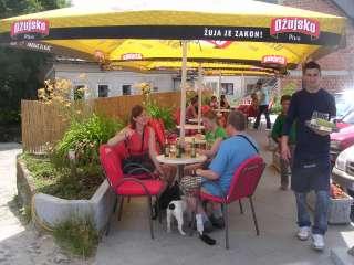 hunde fra bosnien